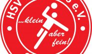 Der HSV bietet einen Ballsportkindergarten an